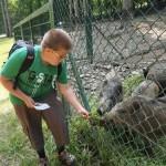 Im Wild - und Freizeitpark Allensbach