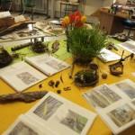 Ausstellung des Waldprojekts von Kl.4