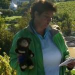 5 Die Geschichte von Tramino, dem Weintroll