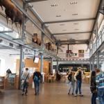 Museum Inatura Dornbirn